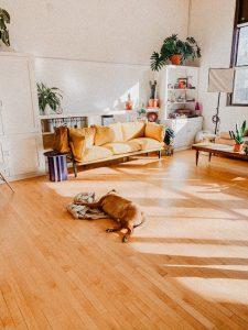 Floor Polish and sanding Melbourne
